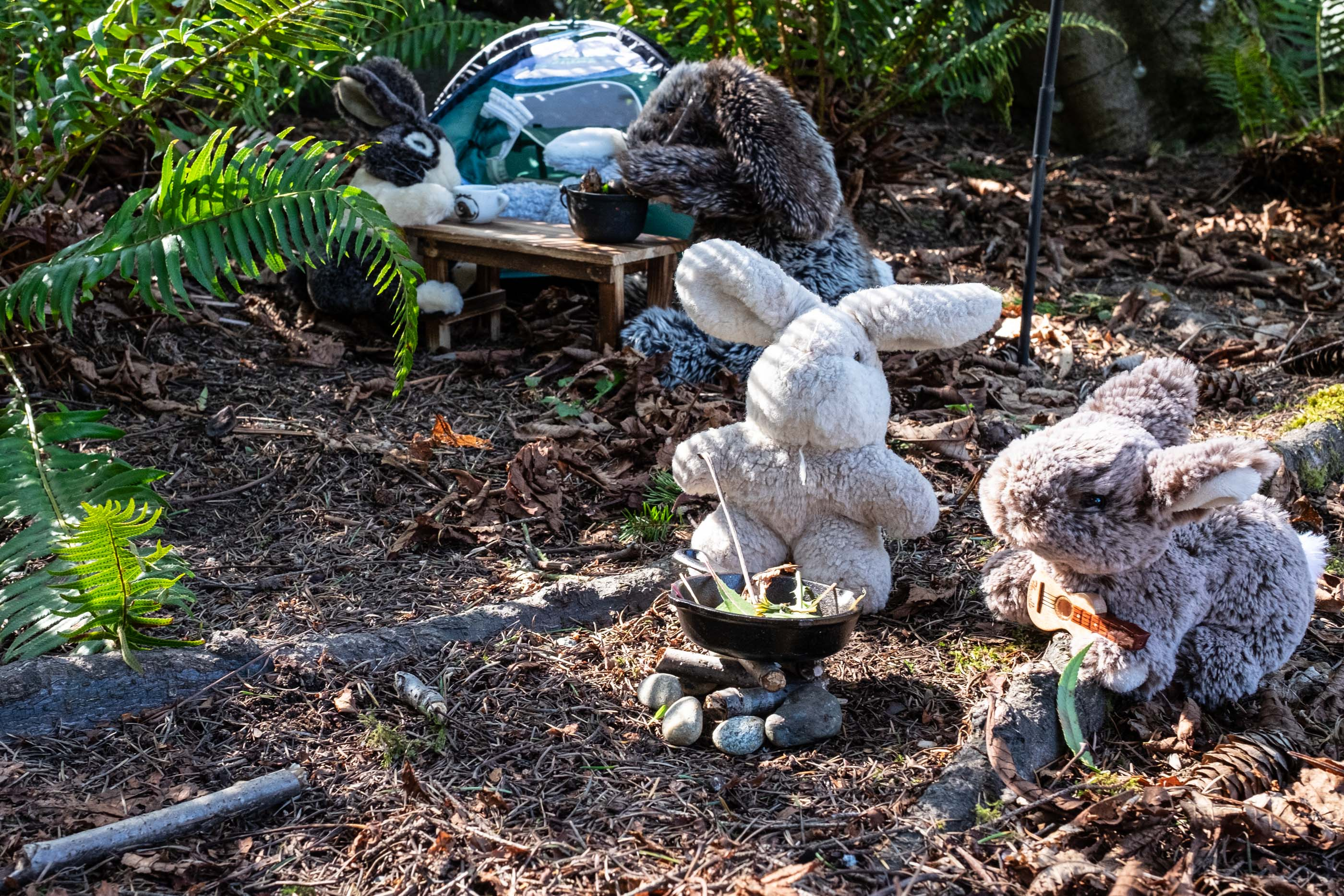 bunnies having a campfire