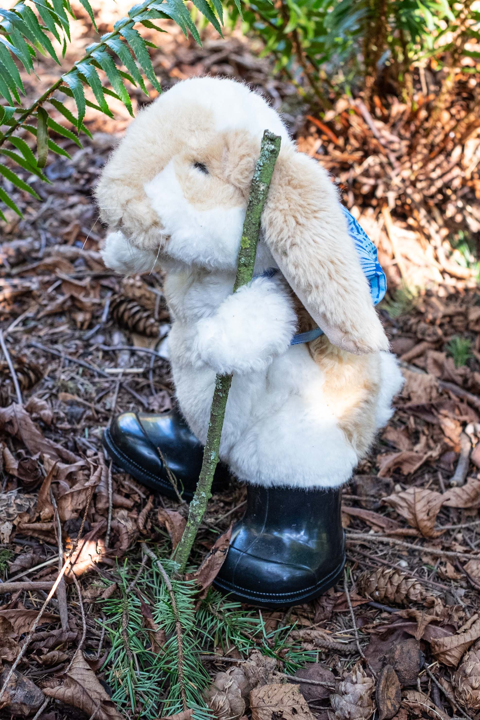 puppet bunny hiking in boots