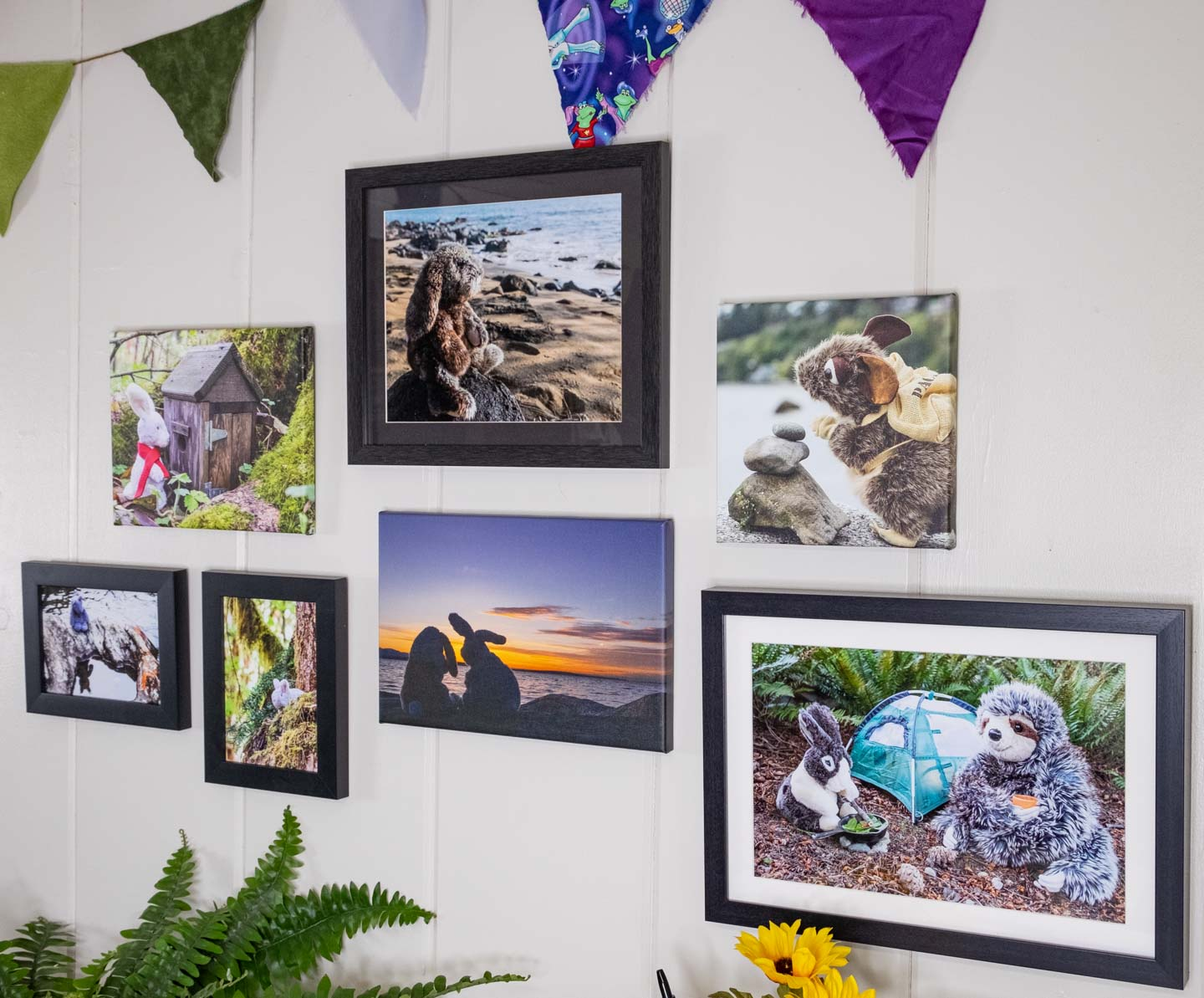 Photographs of stuffed animals framed and hung on a wall in a group