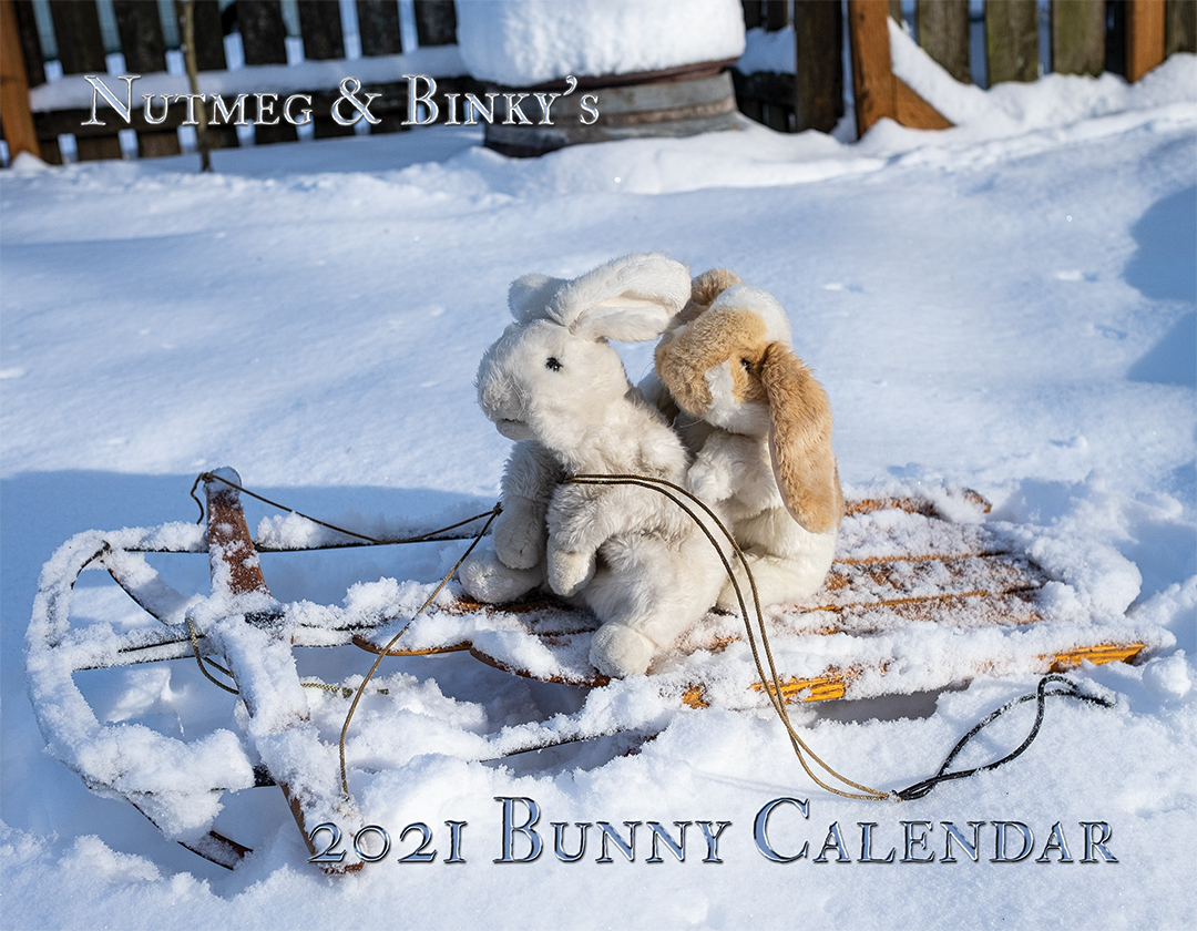 Cover of Nutmeg and Binky's 2021 Bunny Calendar, showing two stuffed bunnies on a sled in the snow