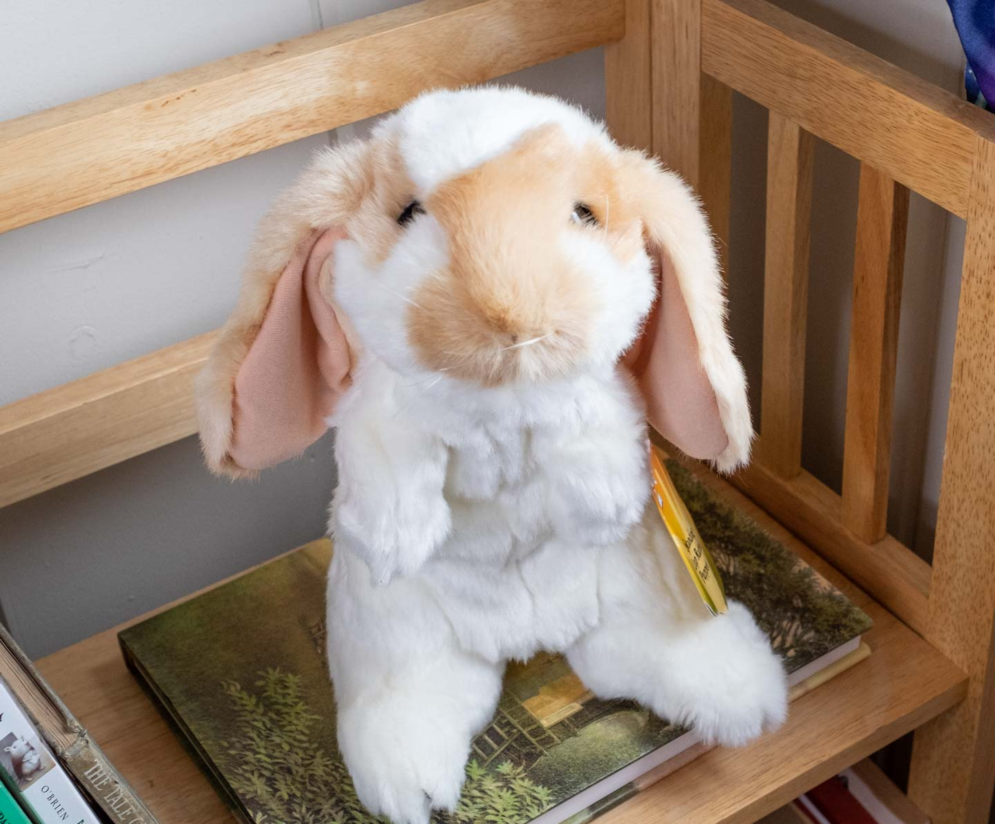 white and brown lop rabbit puppet