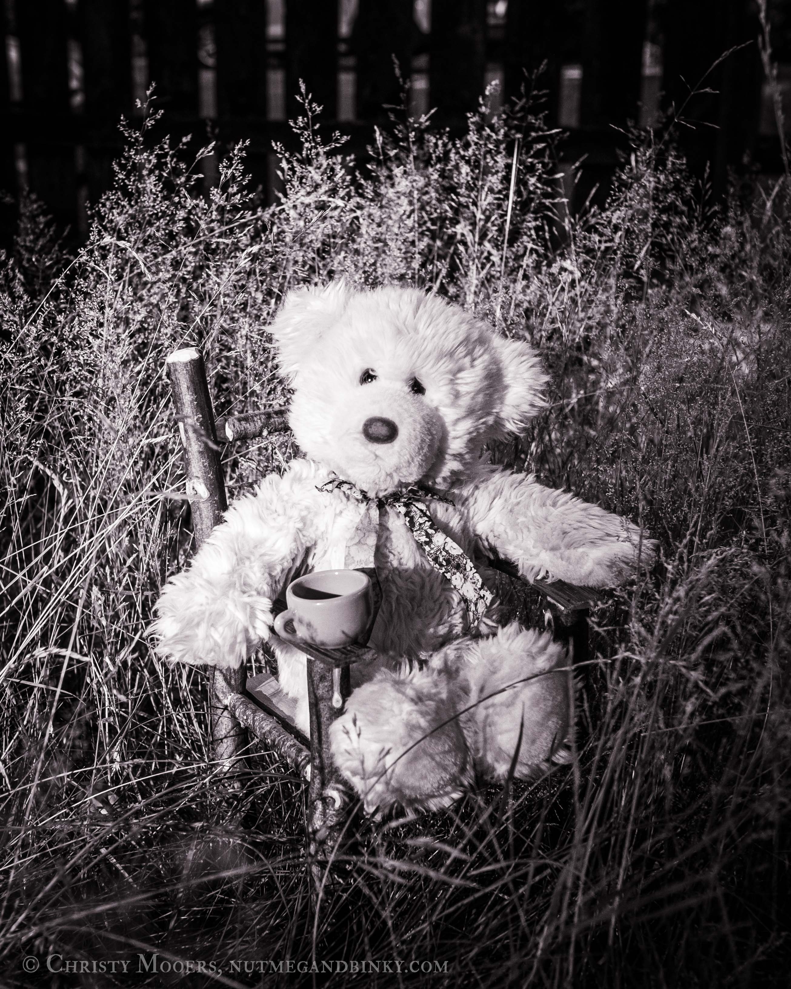 black and white photograph of white teddy bear having tea in a field