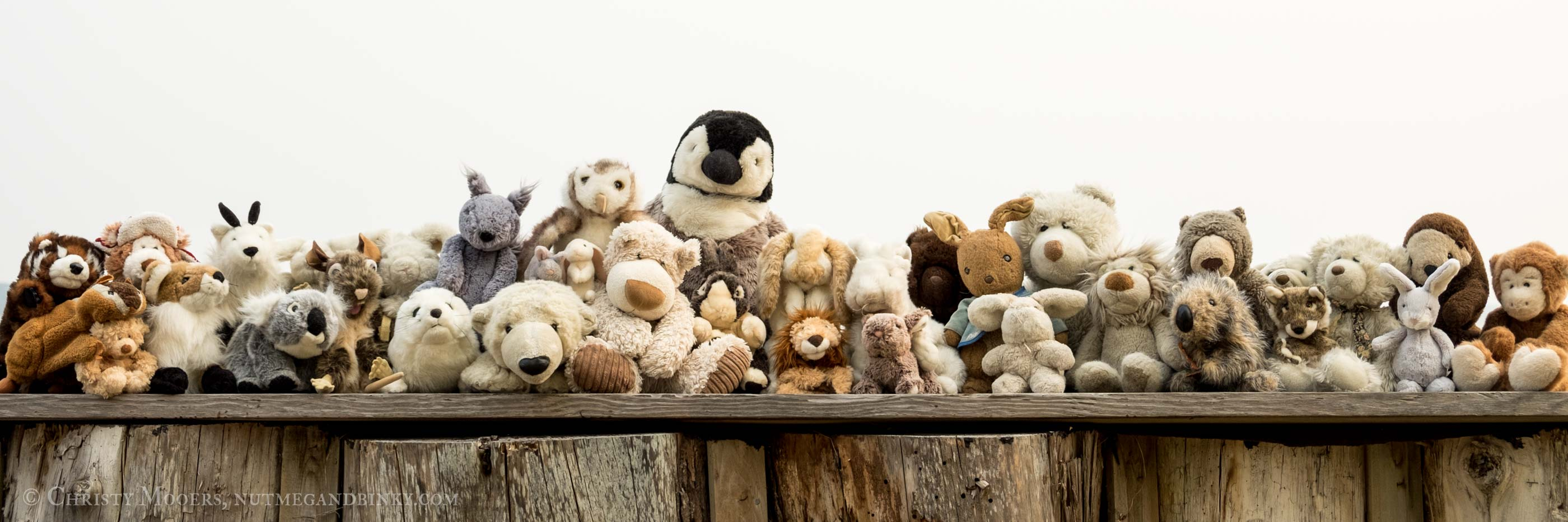 Large groupl of stuffed animals lined up on a wooden bulkhead