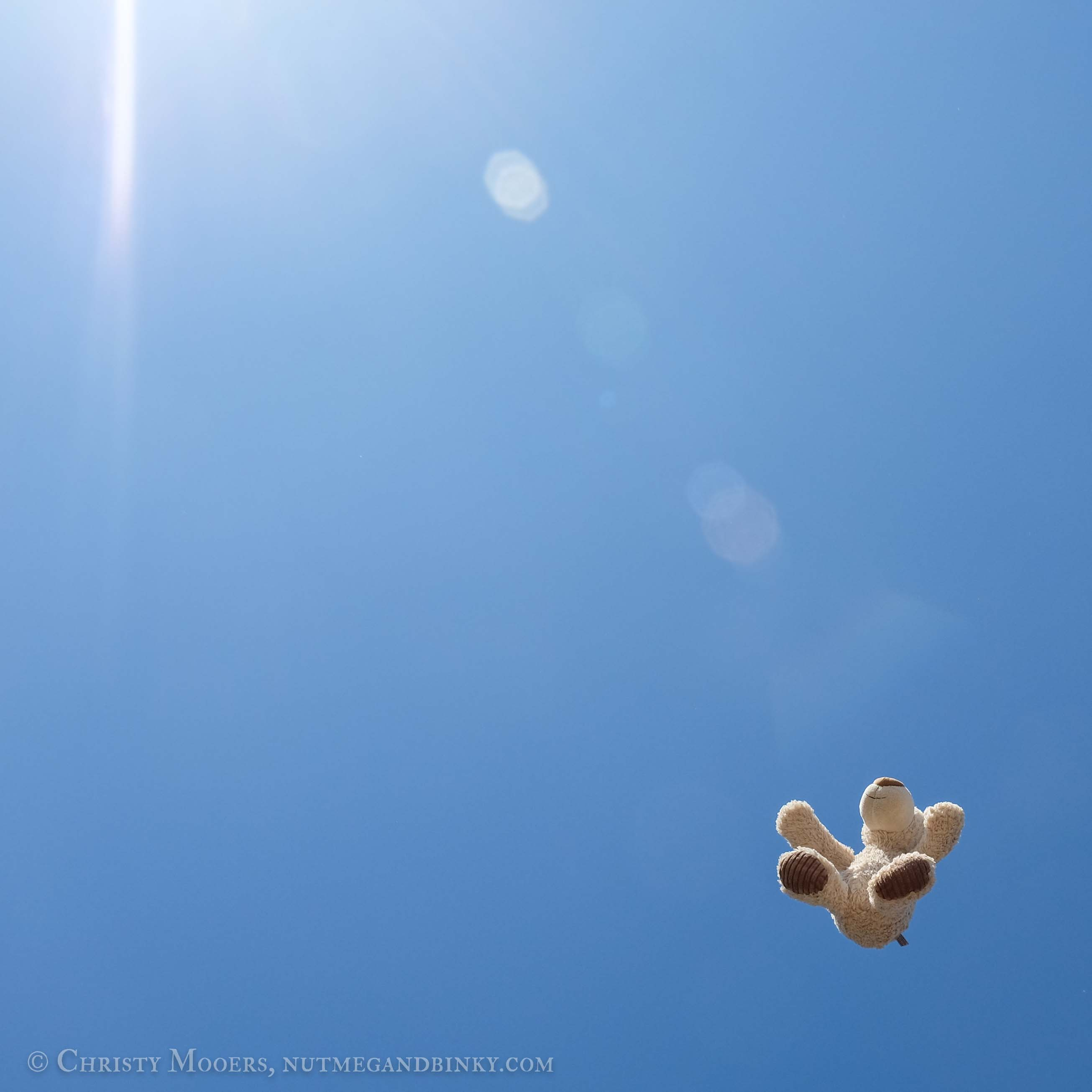 teddy bear tossed up into a clear blue sky