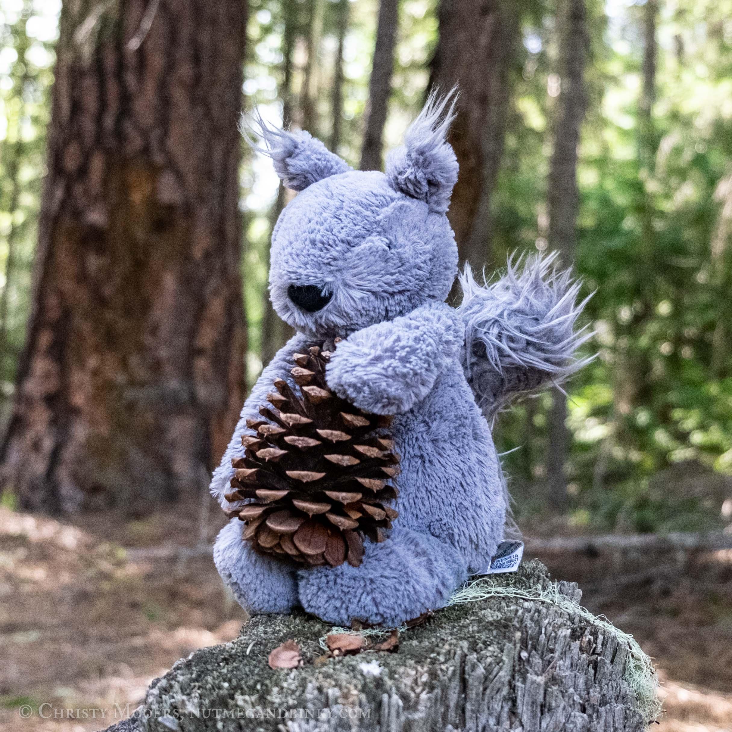 plush squirrel holding a pine cone