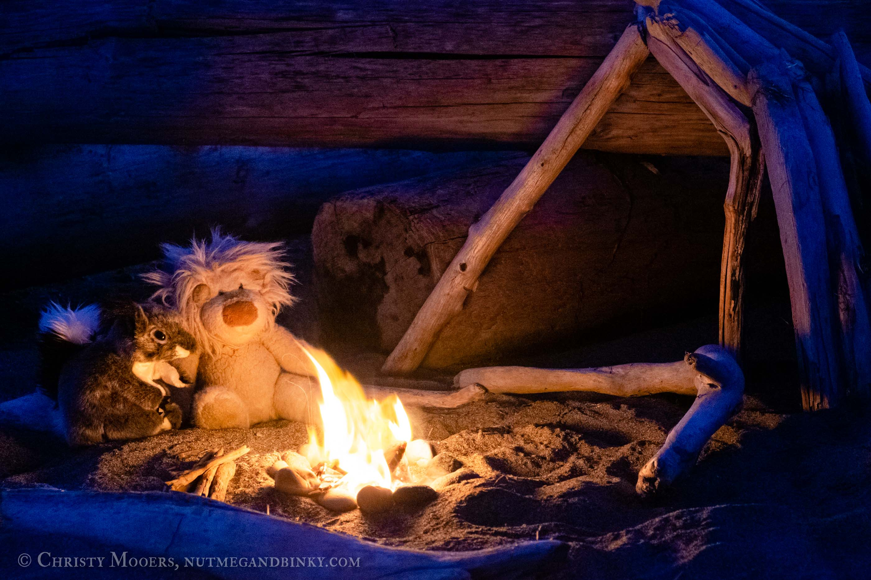 plush squirrel and lion having a campfire on the beach