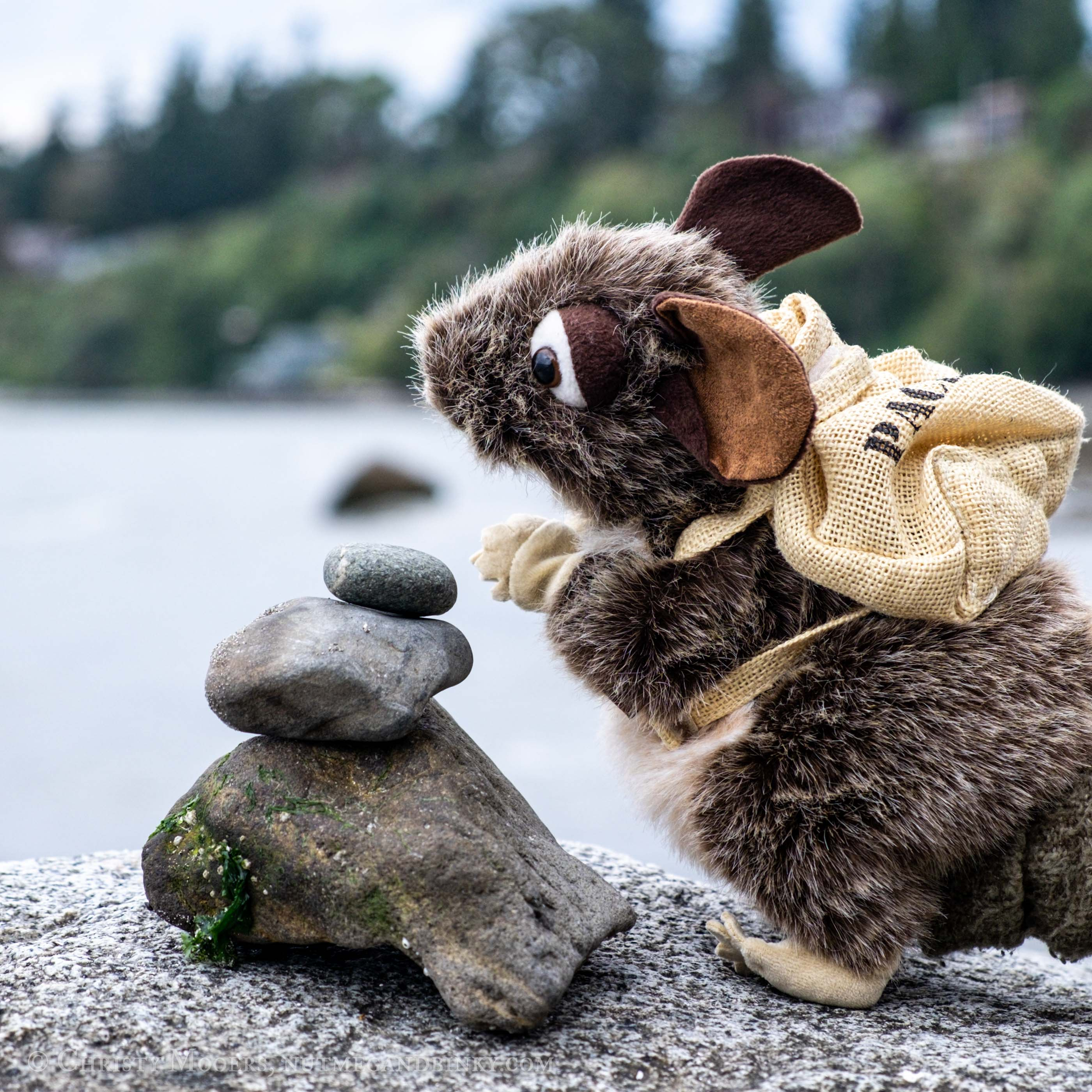 puppet packrat with backpack looking into the distance over a cairn of rocks