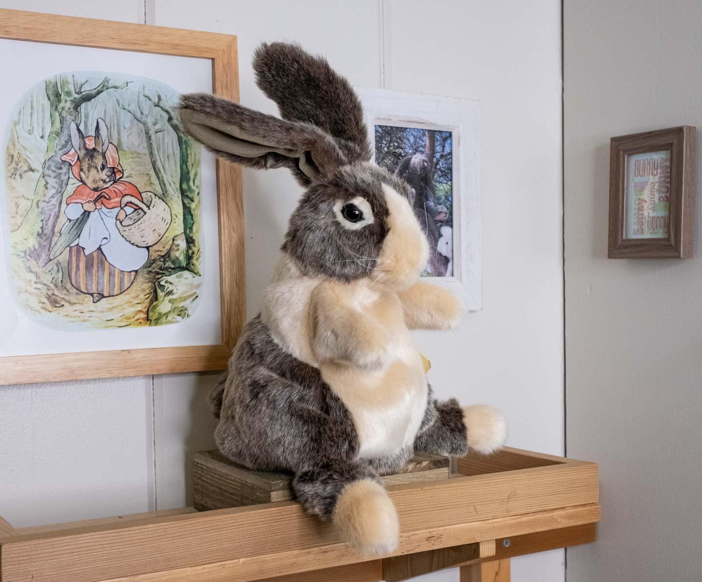 Brown and cream Dutch rabbit puppet