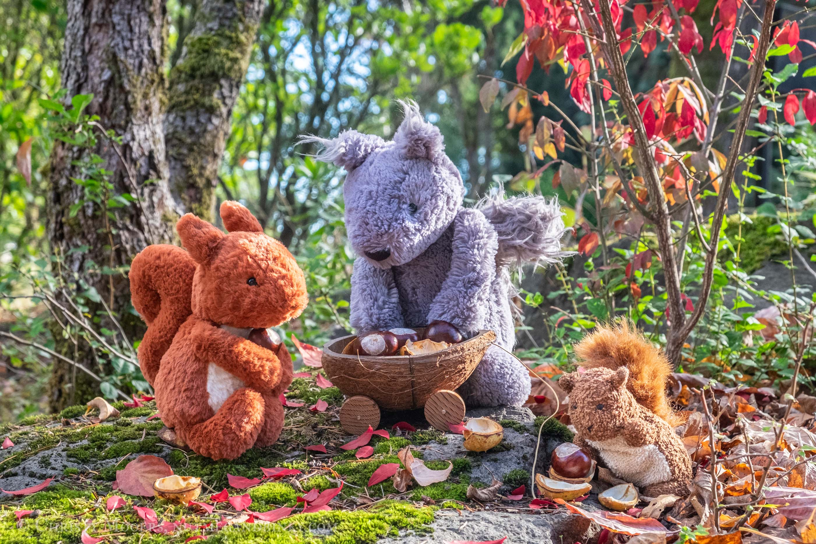 Red, gray, and brown plush squirrels holding chestnuts around a coconut shell wagon with fall leaves all around