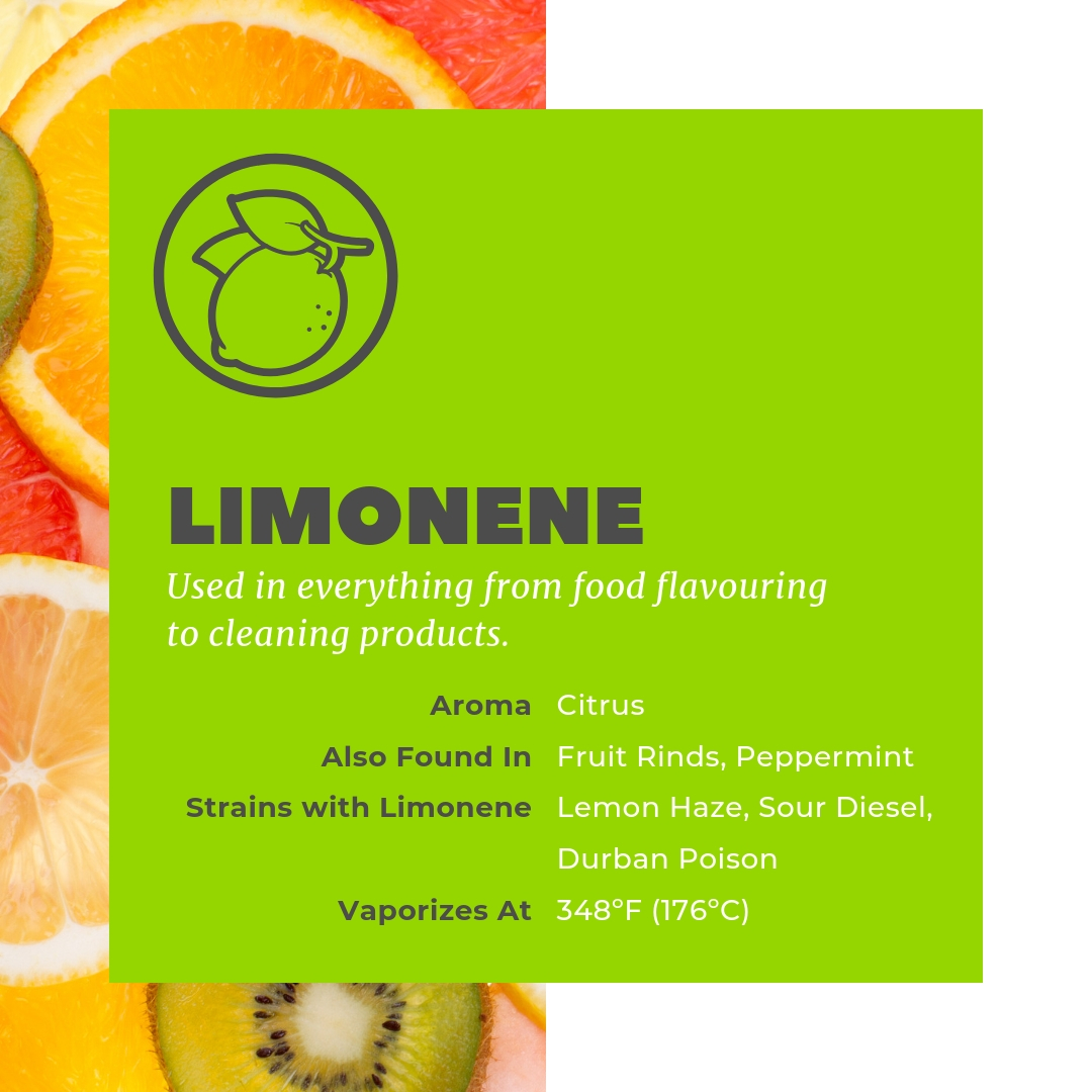 Limonene is found in citrus fruits and used in everything from flavouring to cleaning products.