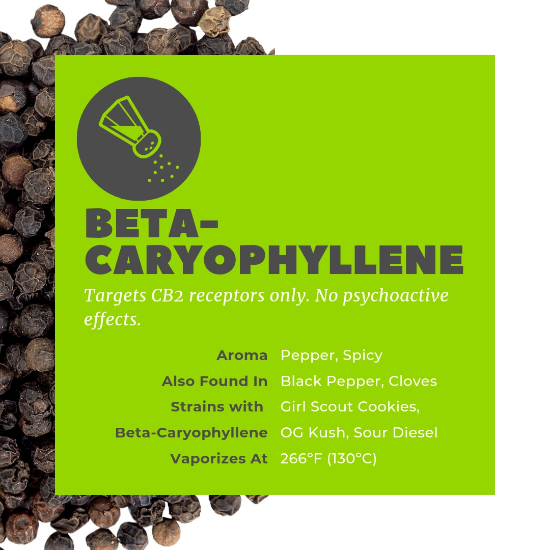 Beta-Caryophyllene is found in black pepper and targets only CB2 receptors.