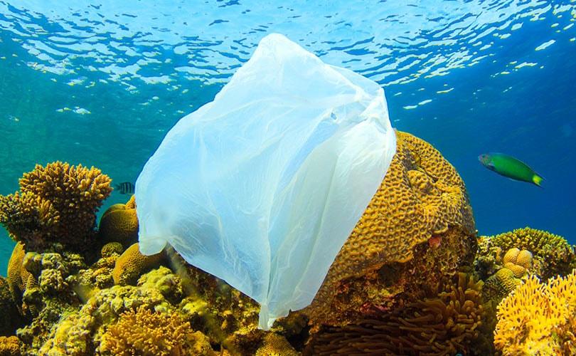 déchet plastique océan seaqual