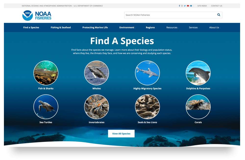 NOAA Fisheries Find a Species Page