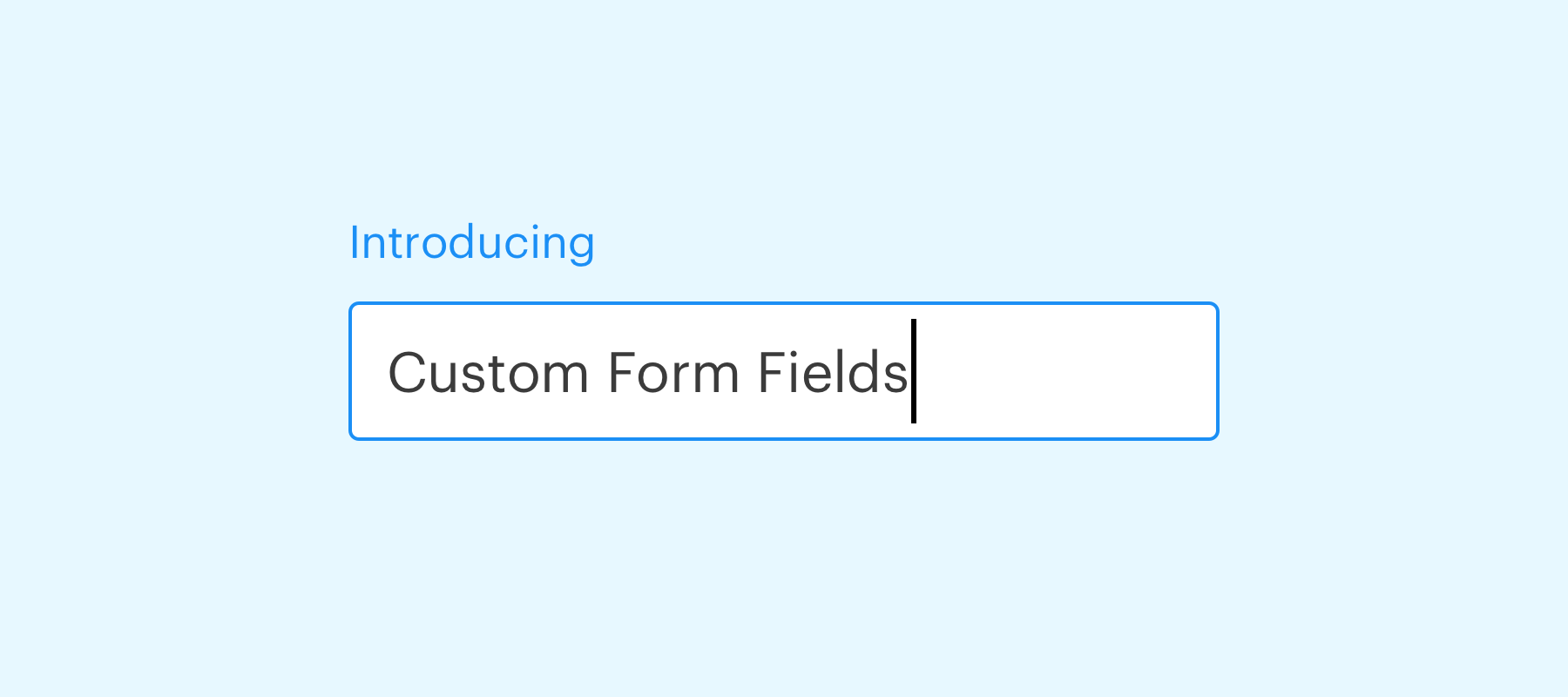 Introducing: Custom Form Fields