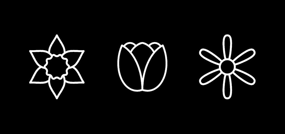 daffodil, tulip, and allium icons