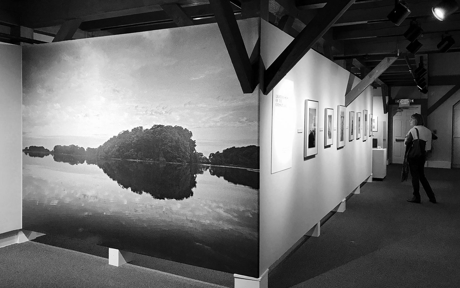woman viewing photography exhibition