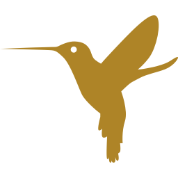 Hummingbird Carlos Salguero