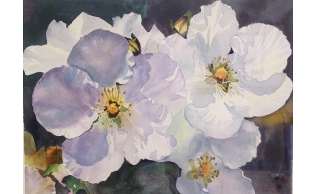 Beginner & Intermedite Watercolour: Bronwen Quick