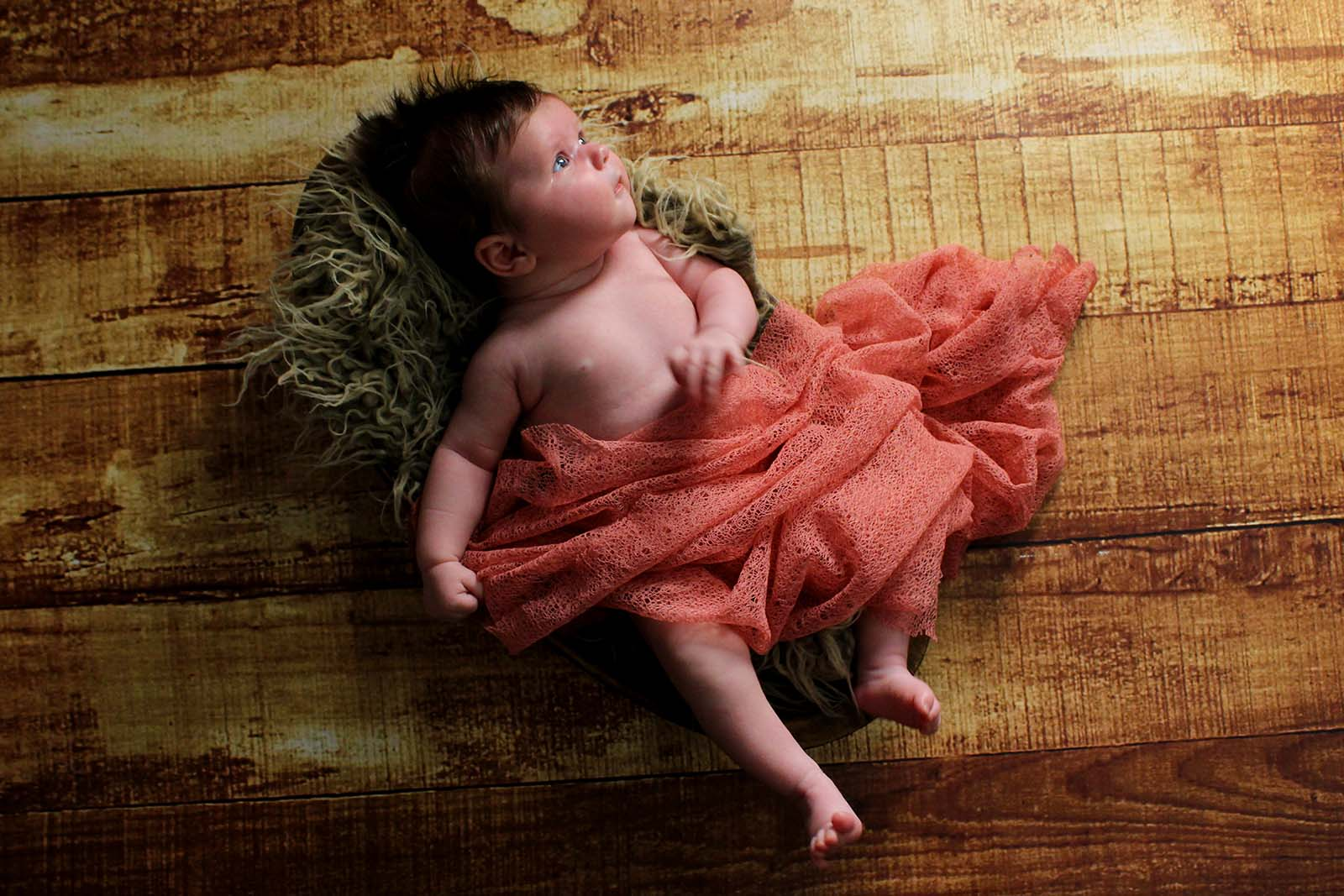 Newborn overhead bowl photography