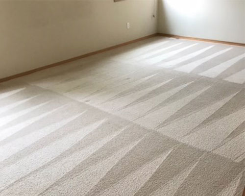 Carpet cleaning by GreenWorks Carpet Cleaning
