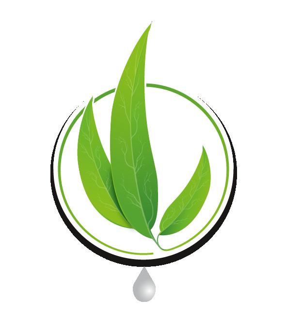 Logo Vita Sana Wellness