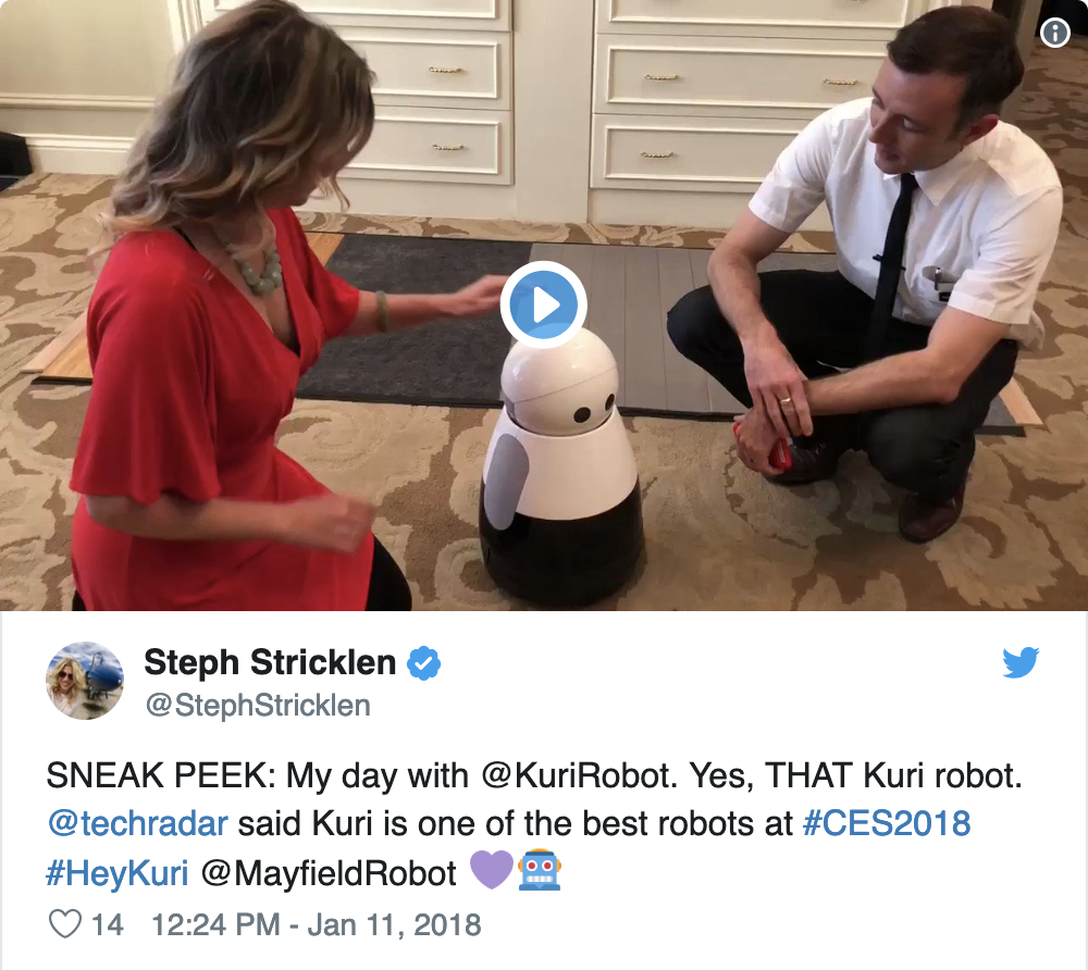 Mayfield Robotics at CES 2018
