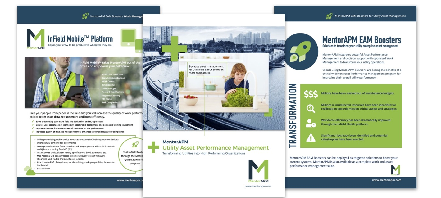 MentorAPM Product and Services Brochures