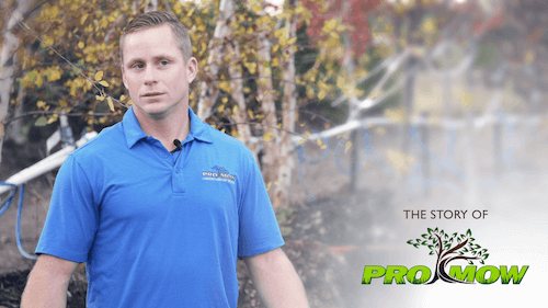 The Story of Pro Mow