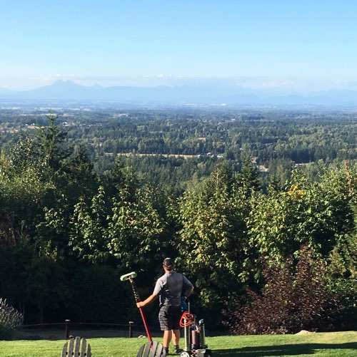 Owner of the celtic clean looking over bellingham wa