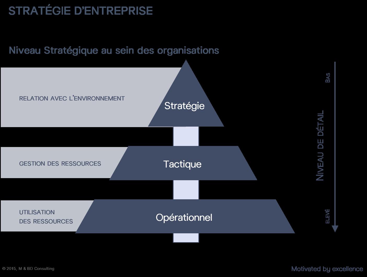 Niveau Stratégique au sein des organisations