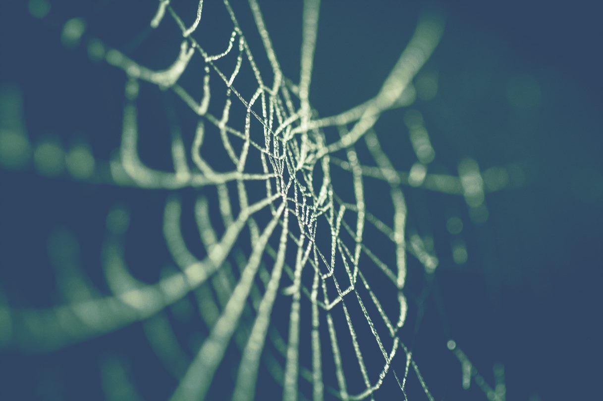 Gérer une transformation organisationnelle : le cas complexe d'un réseau d'entités publiques