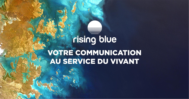 rising blue - votre communication au service du vivant