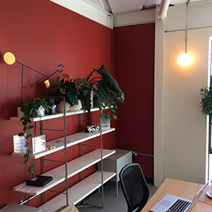 Office decorating red feature wall with shelving