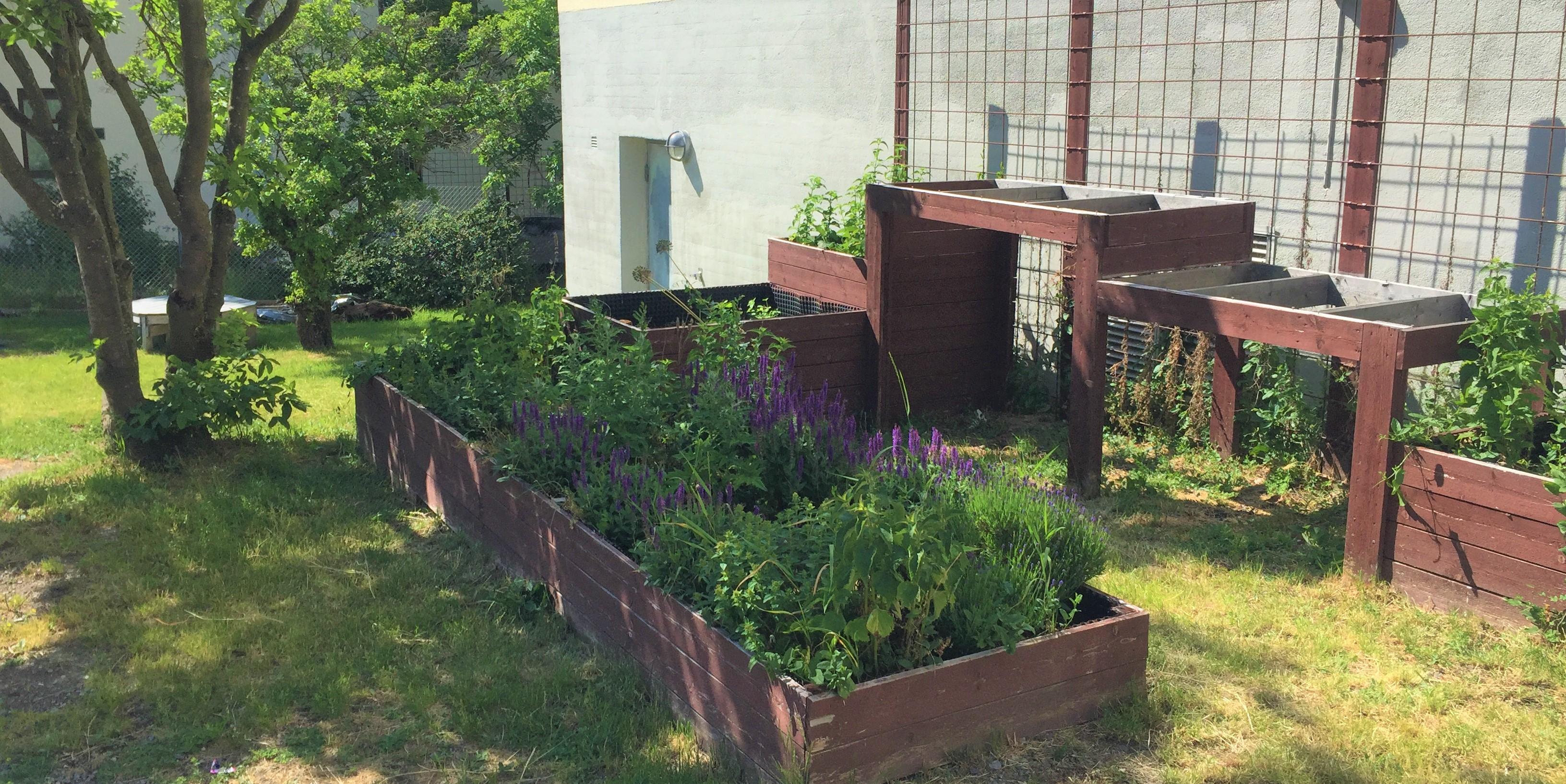 Rekreation i trädgården ökade gemenskapen