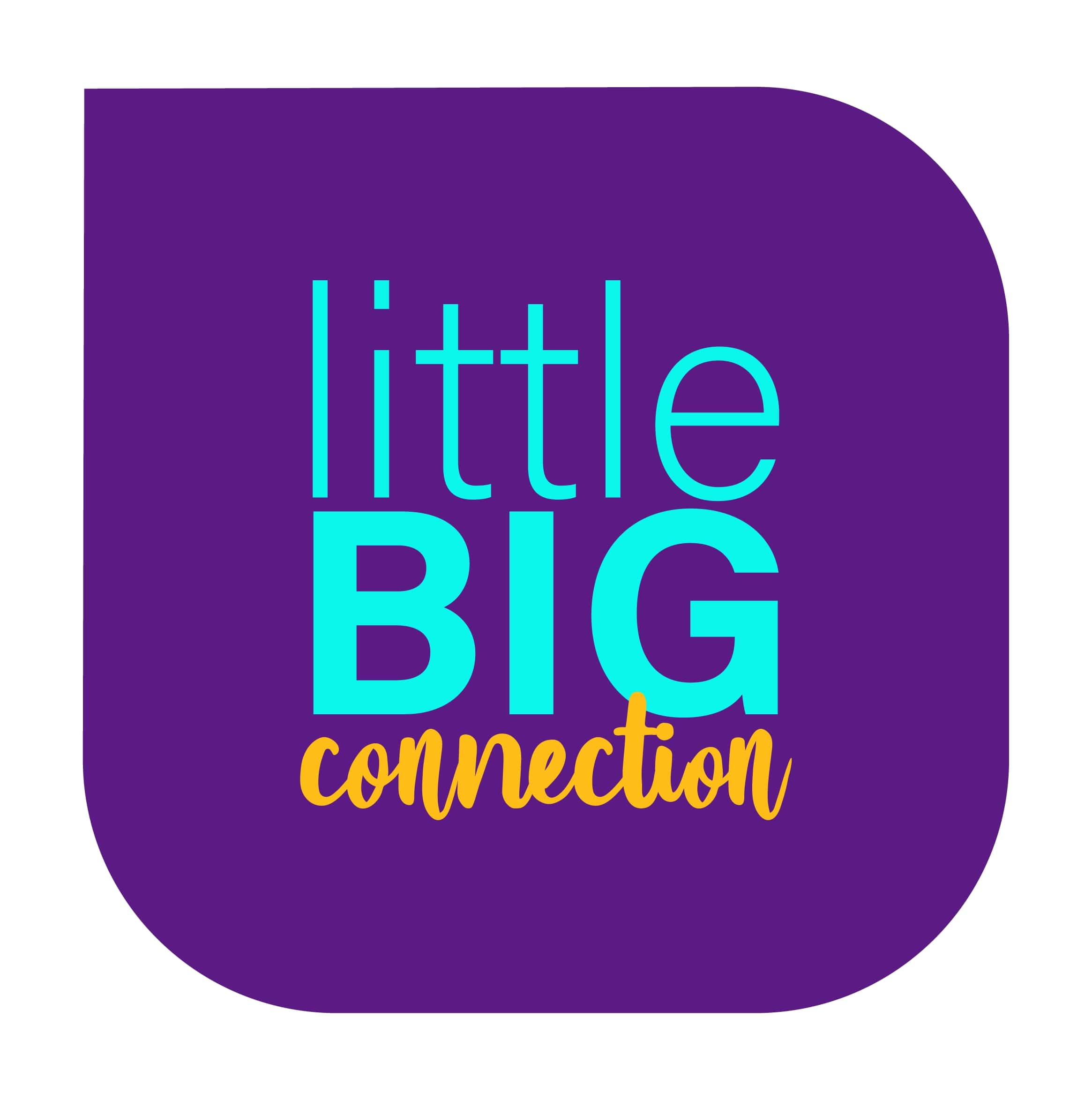 LittleBIG Connection