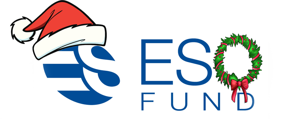 employee-stock-option-fund