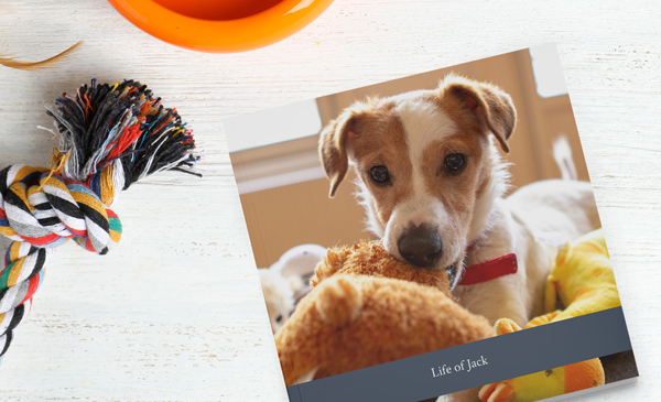 Create Pet Photo Books