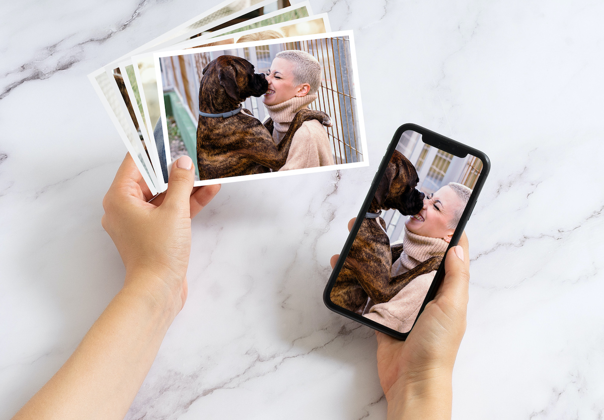 Print Dog Photos Online
