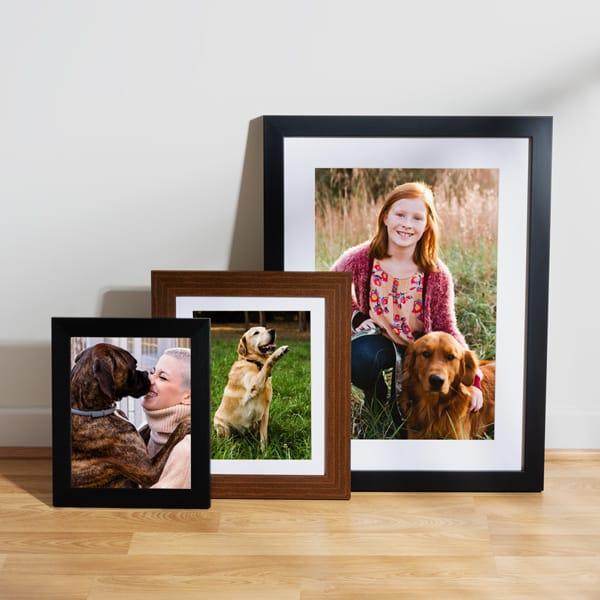 Online Dog Photo Prints In Frames