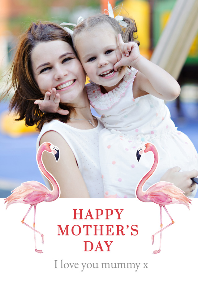 Create a Real Photo Photo Mother's Day Card Flamigos Card