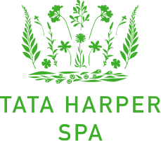 Logo Spa Coeur de Megève