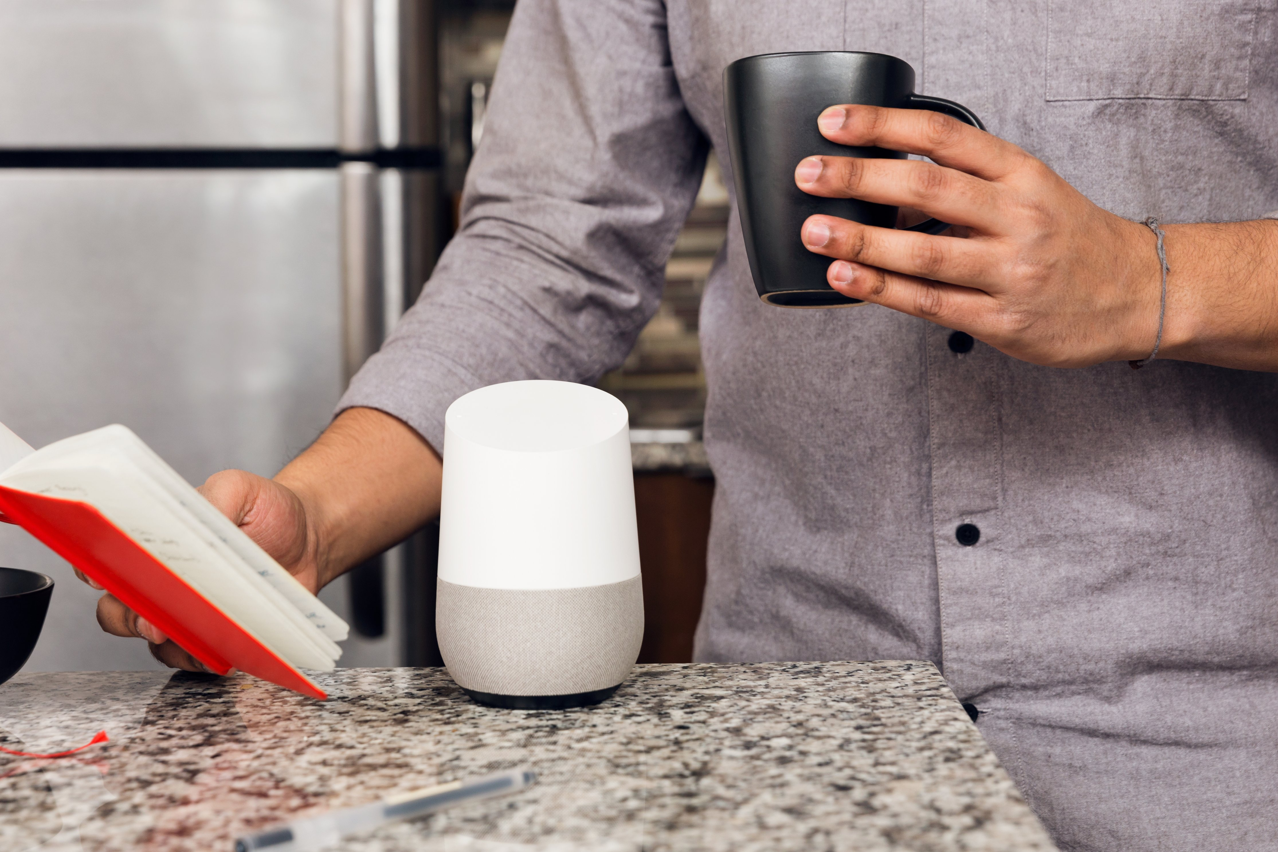 google home smart speaker voice ordering