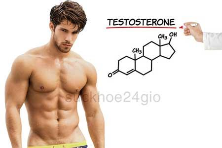 Testosterone là gì? Vai trò và cách tăng testosterone ở nam giới