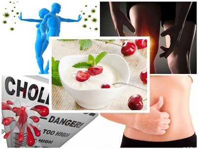 Tác dụng của sữa chua với sức khỏe con người