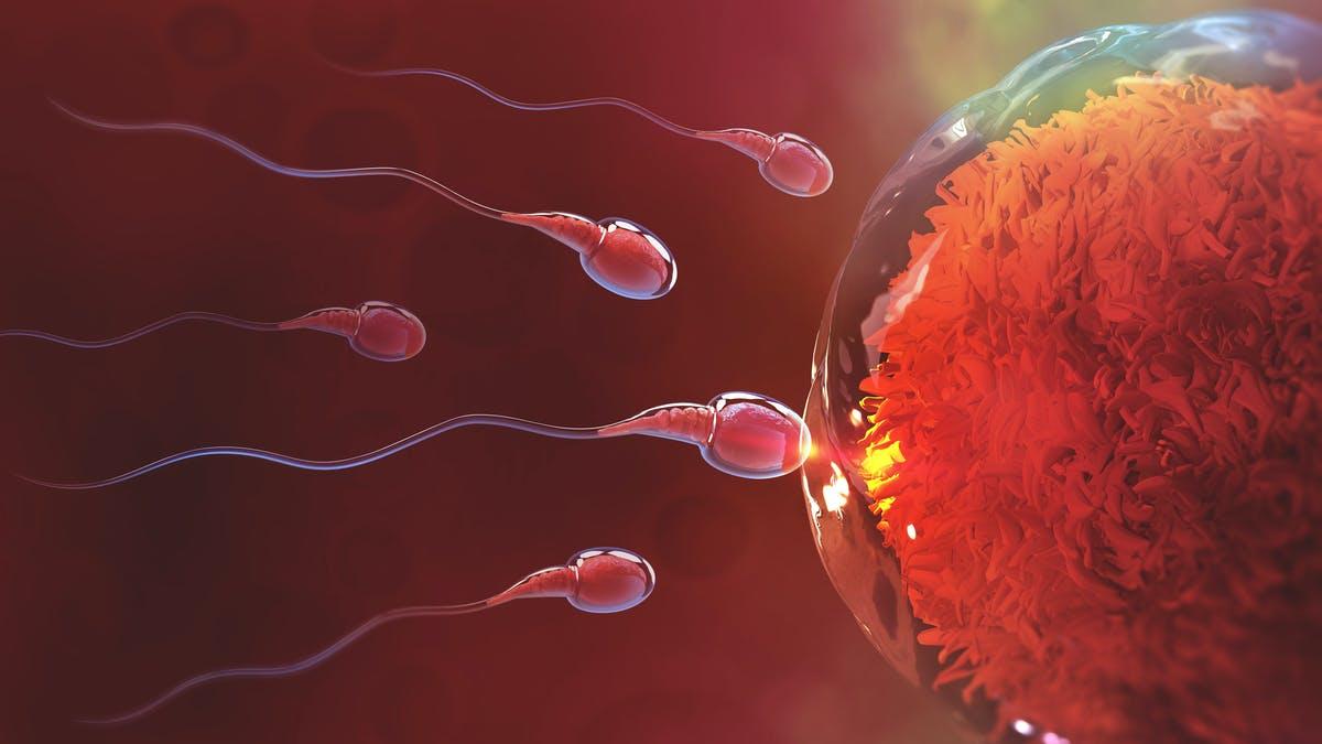 Tinh trùng màu nâu đỏ là tình trạng bất thường ở nam giới