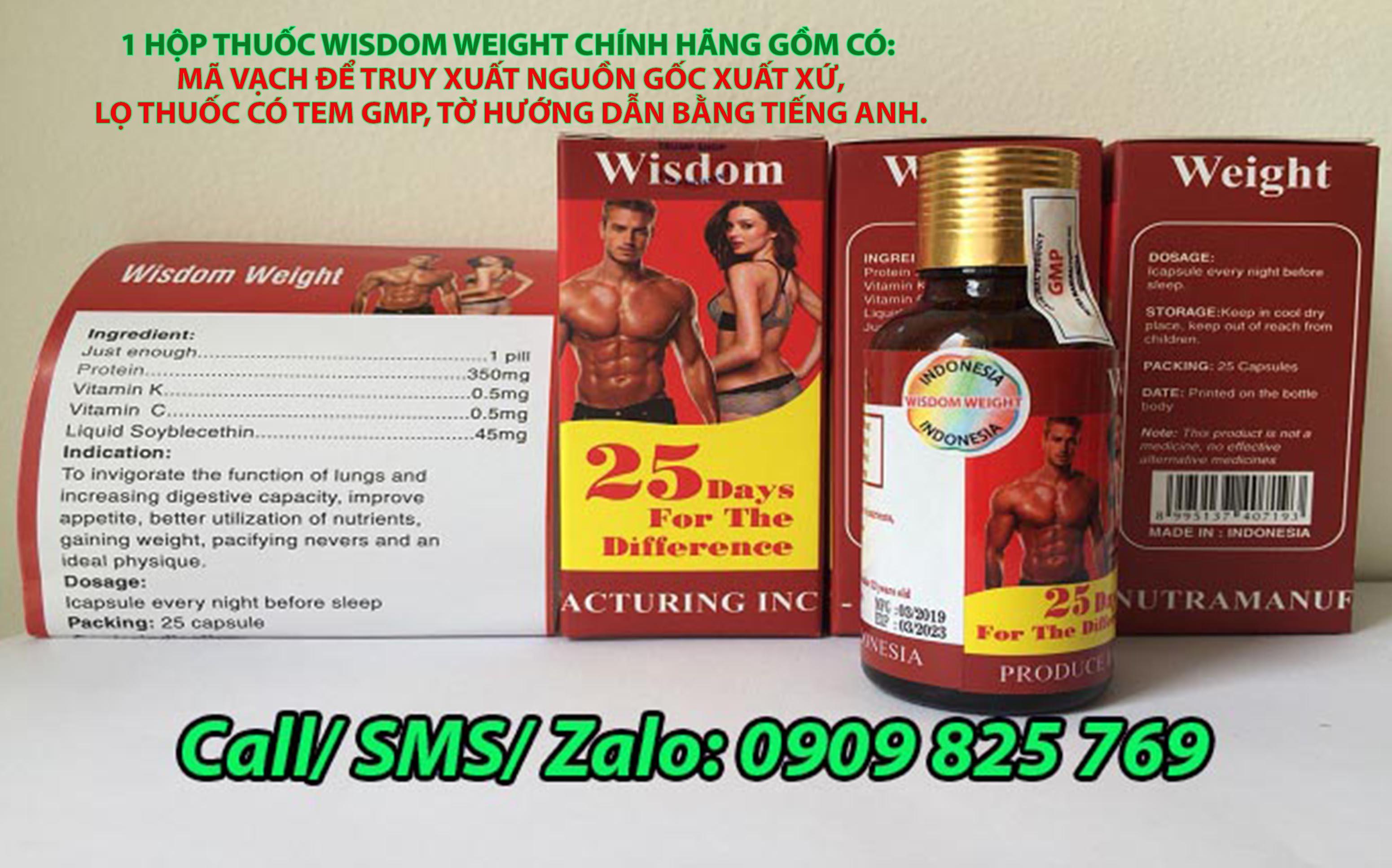 Thuốc tăng cân Wisdom Weight chính hãng Indonesia