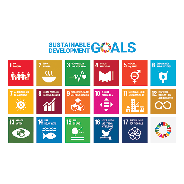 The Sustainable Development Goals are the blueprint to achieve a better and more sustainable future for all. They address the global challenges we face, including poverty, inequality, climate change, environmental degradation, peace and justice.
