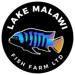 Lake Malawi Fish Farm Limited