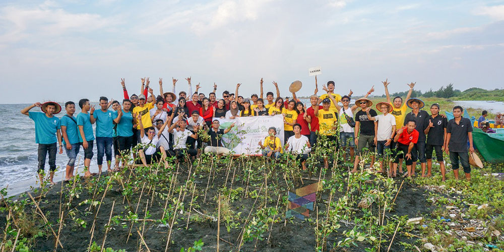 Ngabuburit tanam 2000 bakau di Mangrove Tapak, Tugurejo