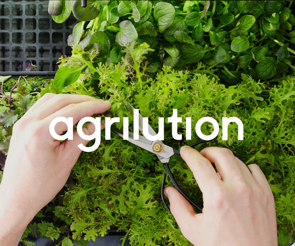Agrilution - Project thumbnail